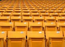 Gelbe Klappstühle gezeichnet auf dem Stadionssport Stockbilder