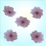 Gelbe Kornelkirsche-Blume Stockbild
