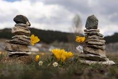 Gelbe Krokusblumen und Zensteine Lizenzfreie Stockbilder