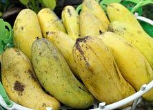 Gelbe Mango im Korb Lizenzfreie Stockbilder