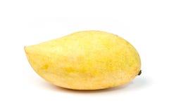 Gelbe Mangofrucht Stockbilder