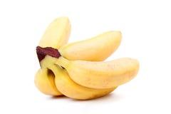 Gelbe Minibananen Lizenzfreies Stockbild