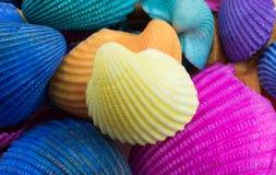 Gelbe Muschel auf mehrfarbige Muscheln Stockfotografie
