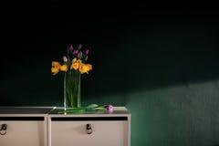 Gelbe Narzisse blüht mit der purpurroten Tulpe, die im Vase mit folgendem bösem Korb der grünen Wand auf weißen Regalen blüht stockfotos