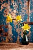 Gelbe Narzissen im Vase vor Holztür stockfotografie