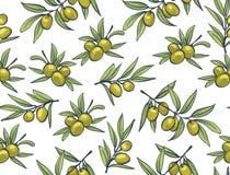 Gelbe Oliven von den Niederlassungen auf einem weißen Hintergrund vektor abbildung