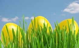 Gelbe Ostereier im grünen Gras unter blauem Himmel Lizenzfreies Stockfoto