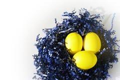 Gelbe Ostereier im Vogel des blauen Papiers nisten auf Weiß Lizenzfreies Stockfoto