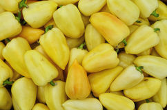 Gelbe Peperoni Lizenzfreies Stockfoto
