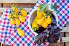 Gelbe Peperoni und gelbe Tomaten mit purpurrotem Basilikum Lizenzfreie Stockfotografie