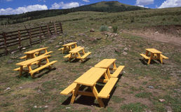 Gelbe Picknick-Tabellen Stockbilder