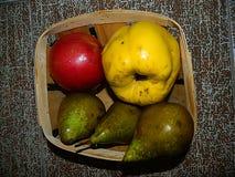 Gelbe Quitte, roter Apfel, grüne Birne in einem hölzernen Korb Lizenzfreie Stockfotos