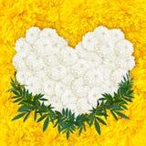 Gelbe Ringelblume blüht Herzrahmen Lizenzfreie Stockbilder