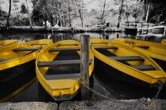 Gelbe Ruderboote gezerrt am Pier - Schwarzweiss-Hintergrund Stockfotografie