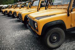 Gelbe Safari-LKWs Stockbilder