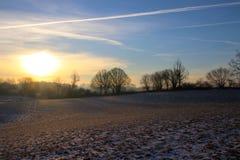 Gelbe Schatten auf dem schneebedeckten Feld so reizend Lizenzfreies Stockbild