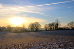 Gelbe Schatten auf schneebedecktem Feld Stockfotos
