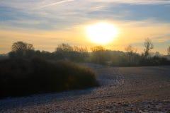 Gelbe Schatten im Schnee Stockbild