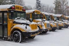 Gelbe Schulbusse geparkt im Schnee Stockbilder