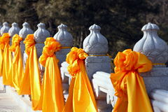 Gelbe silk Blume Stockfotografie