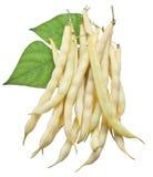 Gelbe Stangenbohnen lokalisiert auf einem Weiß Lizenzfreies Stockbild