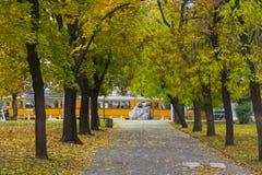 Gelbe Straßenbahn und Herbstgasse in Sofia, Bulgarien Park Zaimov 18 10 2016 Lizenzfreie Stockbilder