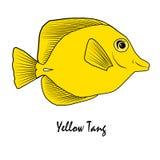 Gelbe Tang Saltwater Aquarium Fish-Illustration Lizenzfreie Stockfotografie