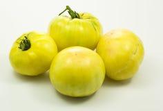Gelbe Tomaten über Weiß stockbild