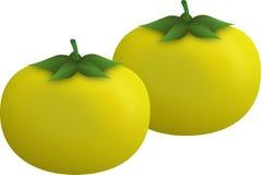 Gelbe Tomaten Lizenzfreies Stockfoto