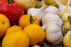 Gelbe Tomaten, eine rote Tomate, Knoblauch und Zwiebeln Lizenzfreie Stockfotos
