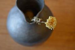 Gelbe trockene Asterblume in einem Metallvase - Draufsicht Stockfotografie
