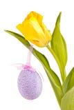 Gelbe Tulpe mit einem Osterei Stockfotos