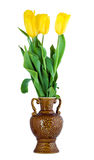 Gelbe Tulpeblumen im Vase Lizenzfreies Stockfoto