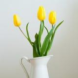 Gelbe Tulpen Stockfotos