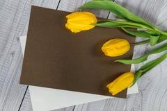 Gelbe Tulpen auf der Platte für die Kennzeichnung Lizenzfreie Stockfotografie