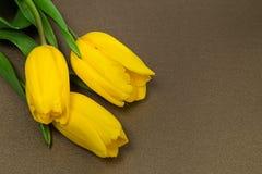 Gelbe Tulpen auf Papier, Lizenzfreie Stockfotografie