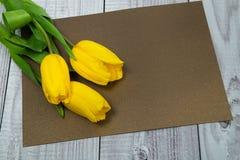 Gelbe Tulpen auf Papier, Stockfotografie