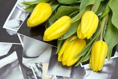 Gelbe Tulpen auf Schwarzweiss-Fotographien Stockfotos