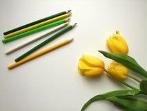 Gelbe Tulpen und Bleistifte Lizenzfreie Stockbilder