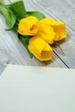 Gelbe Tulpen und helles Papier Lizenzfreie Stockbilder