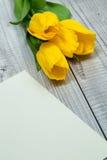 Gelbe Tulpen und helles Papier Stockfotos