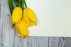 Gelbe Tulpen und helles Papier Lizenzfreies Stockfoto