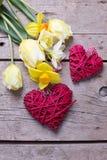 Gelbe Tulpen und Narzissenblumen und rote dekorative Herzen Lizenzfreie Stockfotos