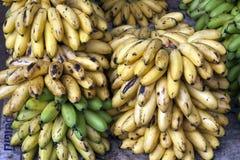 Gelbe und grüne Bananen lizenzfreie stockbilder