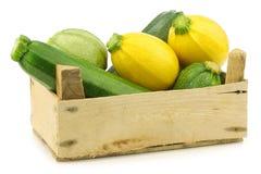 Gelbe und grüne Zucchini (Cucurbita pepo) stockbild
