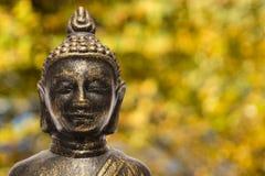 Gelbe und orange Blätter Buddhas im Fall Stockfotos