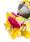 Gelbe und rosa Cala-Lilien mit Geschenk Stockfotos