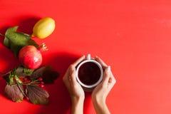 Gelbe und rote Blätter des Herbstes der Frucht Schale der heißen Kaffeehandfrauen lizenzfreie stockfotos