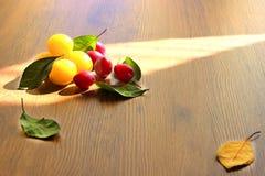 Gelbe und rote Honigpflaume Lizenzfreies Stockfoto