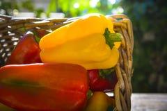 Gelbe und rote Pfeffer lizenzfreie stockfotos